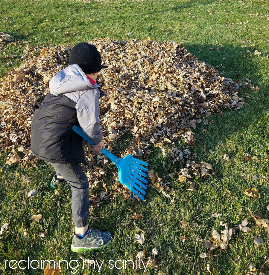 Raking up leaves to jump in